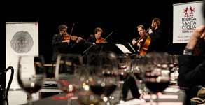catas de vino y música maridaje sonoro
