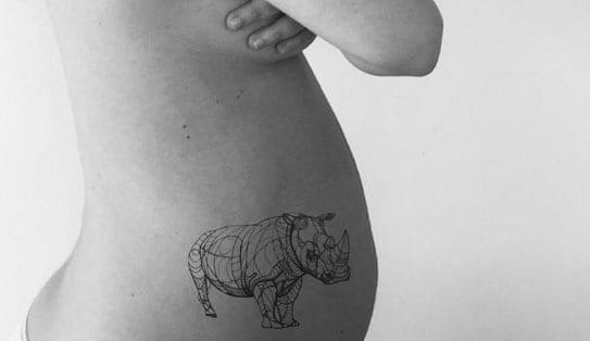 el último rinoceronte blanco carlota ferrer