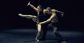 metamorphosis dance al desnudo