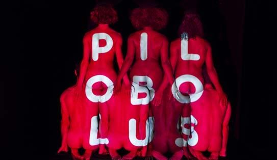 PILOBOLUS BIG FIVE-OH!